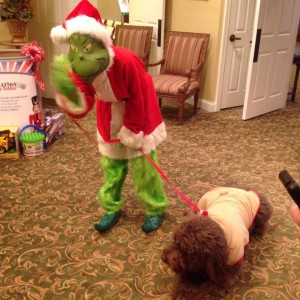 grinch_Max_Operation_Toy_Soldier